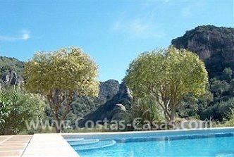 Villa de lujo a la venta benahavis for Radiadores 7 islas